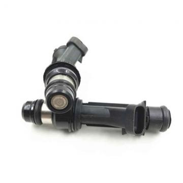 COMMON RAIL 0445110063 injector